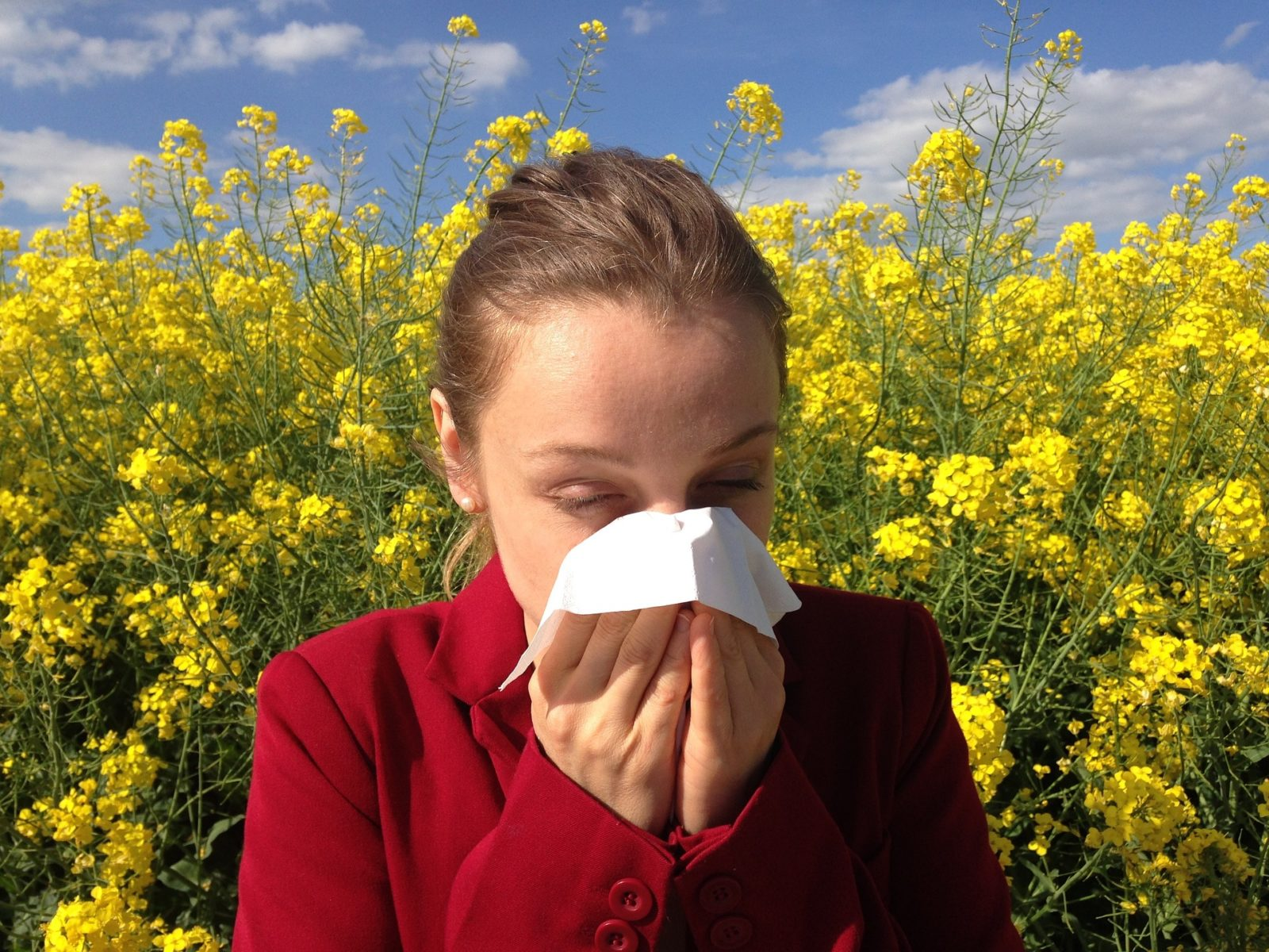 What is sinusitis? | Carolina Asthma & Allergy