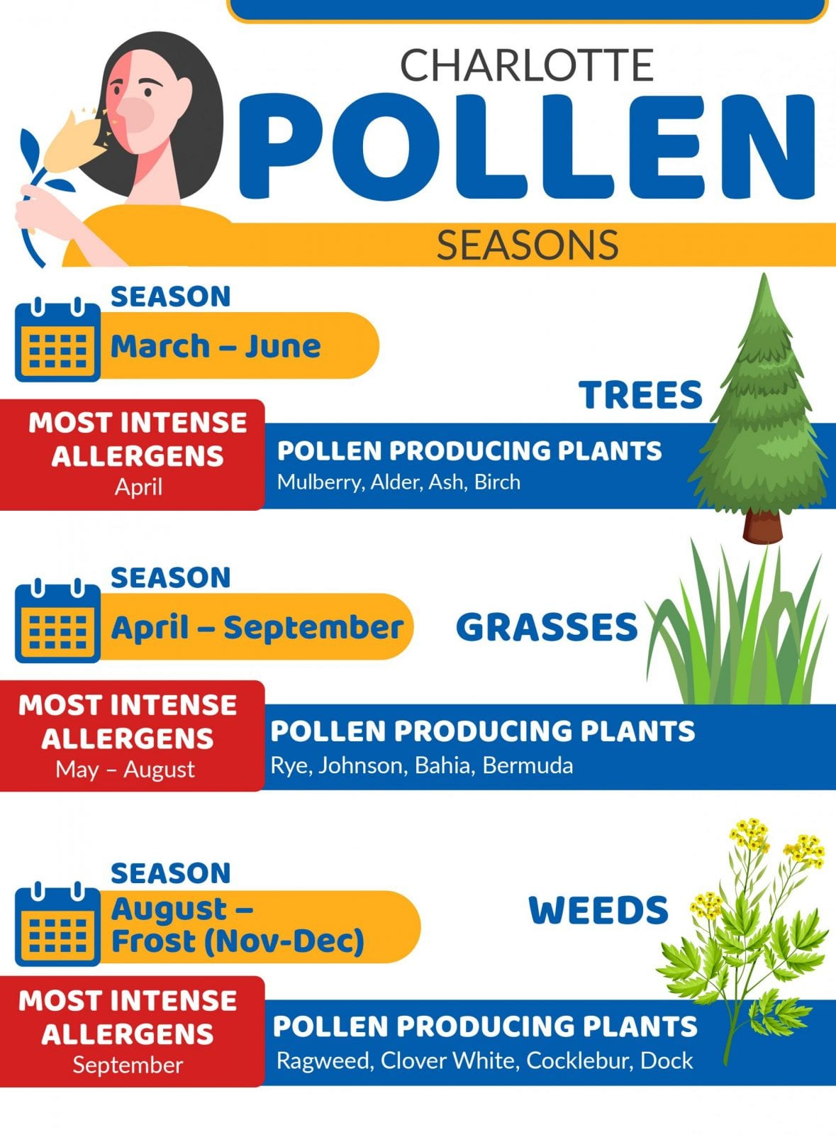 Charlotte's pollen season starts in spring and goes through the first frost.
